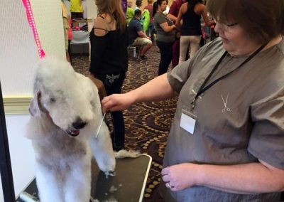 2016 Mardi Gras Pet Expo